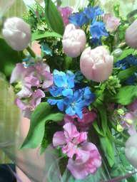 20060228-flower
